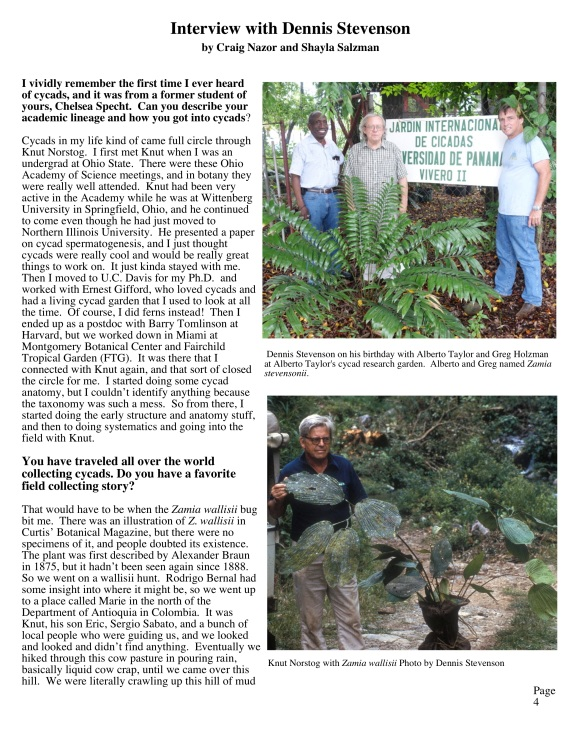 Revised cycad newsletter copy2